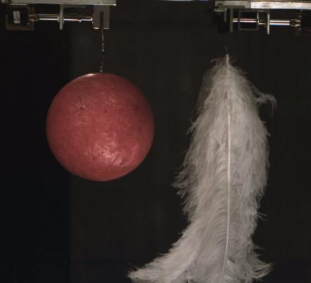 This Video Of Feathers and a Bowling Ball Dropping In a Vacuum is Amazing