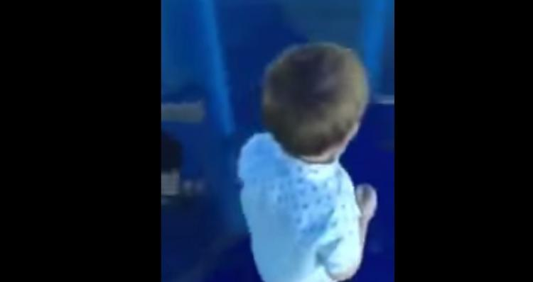 Kid Bashes Head In Mirror Maze